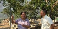 省局领导到玉环市检查 加强普及型国外引种苗圃监管 - 林业厅