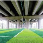 高速公路桥下空间变身漂亮文体公园。 - 浙江新闻网