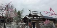永康市西溪镇入选首批省级森林文化小镇 - 林业厅