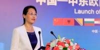 图为:杭州市副市长陈红英正在发布仪式上致辞。王远 - 浙江新闻网