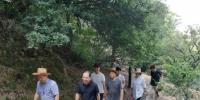 龙湾区人大调研生物防火隔离带建设情况 - 林业厅