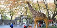 图为:在美院门口亮相的艺术作品《秋·实》。 王远 摄 - 浙江新闻网