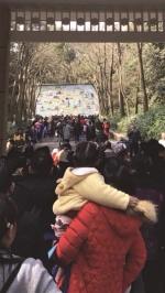 昨天上午,杭州动物园入园口出现大流量。 记者 殷佩琴 摄 - 浙江新闻网