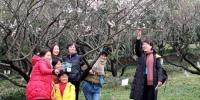 图为:一群市民正在与梅花合影。 柱子 摄 - 浙江新闻网