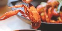 号称十年来最早 小龙虾已经在杭州上市了(图) - 浙江新闻网