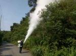 长兴县林场运用科技手段全面开展林业有害生物防治工作 - 林业厅