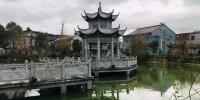 海头村的中心湖。 张斌 摄 - 浙江新闻网