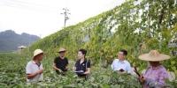 杭州临安纪检监察干部走访农户,了解惠农资金落实情况。杭州纪委提供 - 浙江新闻网