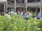 台州市多部门联合到温岭检查指导禁种铲毒工作 - 林业厅