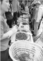 最低卖25元到30元一斤,河虾季来了,便宜又好吃 - 杭州网