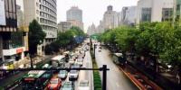 杭州某路段。 钱晨菲 摄 - 浙江网