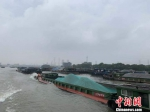 大运河上的货运船舶。 张斌 摄 - 浙江网