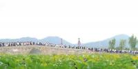 国庆期间杭州西湖游人如织。 李晨韵 摄 - 浙江网
