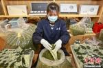 安吉中国白茶城干茶交易市场商铺正在装袋茶叶 潘学康 摄 - 浙江网