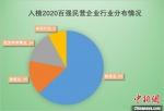 图为入榜2020百强民营企业行业分布情况。 浙江省市场监管局供图 - 浙江网